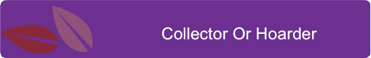 Collector Or Hoarder