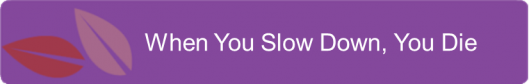 When you slow down, you die